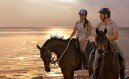Sir Bani Yas Stables - Royal Bay Ride 50