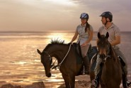Sir Bani Yas Stables - Royal Bay Ride 50