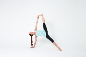 Side Plank with Leg Extend